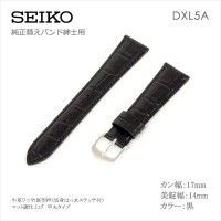 Seiko BAND 17MM DXL5A
