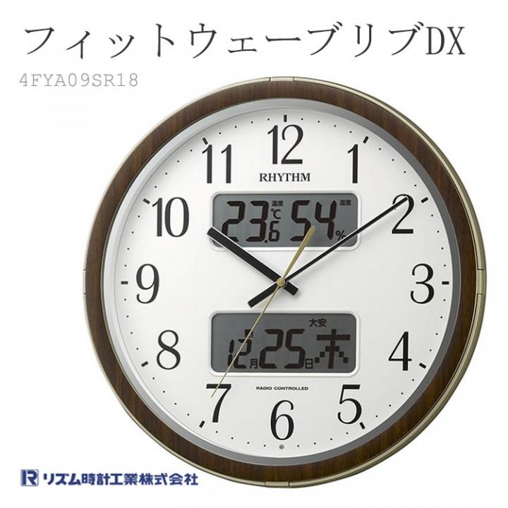 DX 4FYA09SR18