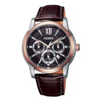 Citizen Collection NB2004-18W