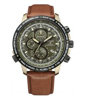 Citizen Promaster Eco-Drive Radio Clock Direct Flight AT8194-11X