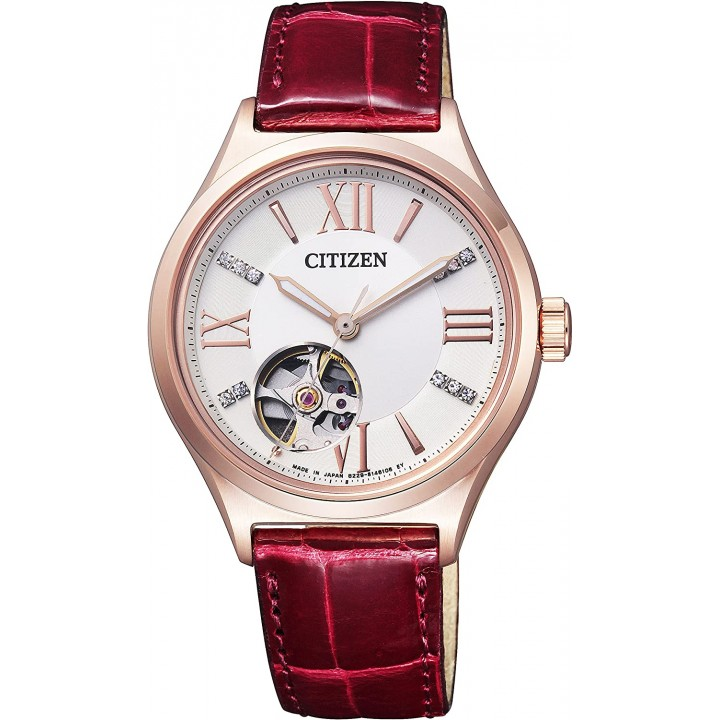 Citizen Collection PC1002-00A